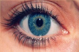 false_eyelashes
